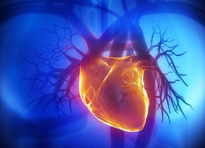 W ciągu najbliższych 10 lat na zawał serca i powikłań po nim może umrzeć ok. 700 tys. Polaków /©123RF/PICSEL