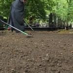 W Dobroniu znaleziono szczątki. Mogą należeć do żołnierza podziemia