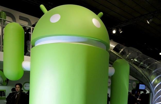 W Google Play jest dużo zawirusowanych aplikacji /AFP