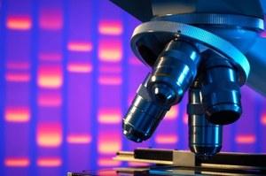 W Japonii ruszają pierwsze testy kliniczne na iPSC