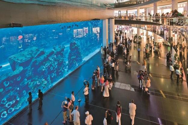 W jednym z centrów handlowych, w przerwie  w zakupach, można zanurzyć się w ogromnym akwarium i karmić setki kolorowych ryb. /Flash Press Media