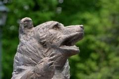 W Krakowie odsłonięto pomnik niedźwiedzia Wojtka