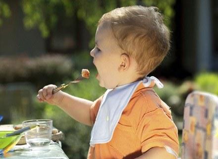W okresie poniemowlęcym można wprowadzić do diety dziecka ryby. /ThetaXstock