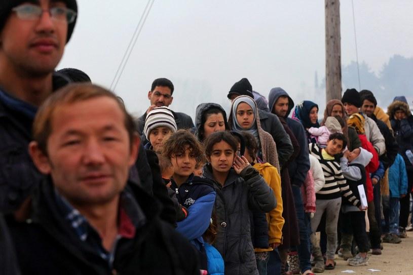 W Pizie uchodźcy będą społecznie sprzątać miasto /AFP