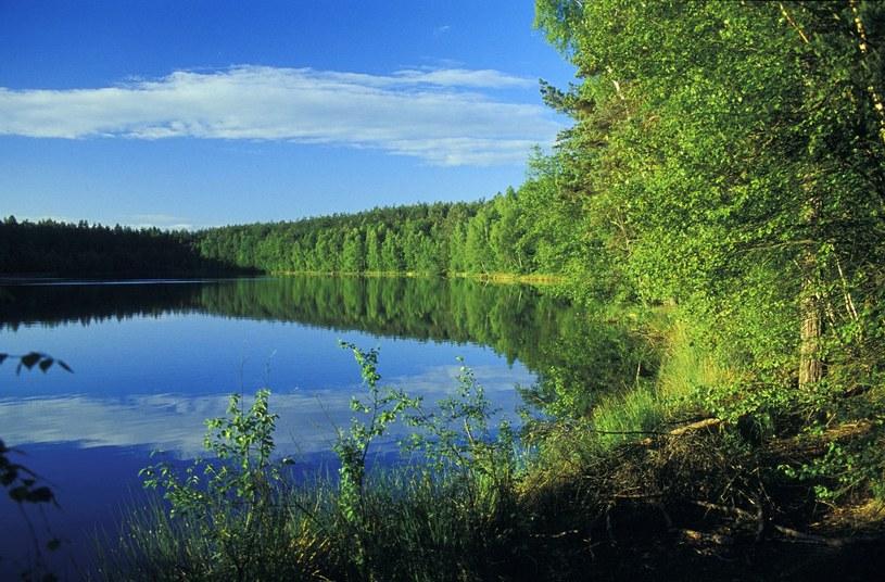 W pobliżu znajduje się jedno z najczystszych jezior w Polsce /PIOTR PLACZKOWSKI/REPORTER /East News