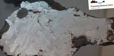 W Poznaniu można oglądać największy w Polsce meteoryt