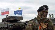 W Rosji o wschodniej flance NATO: Ukłucie słonia przez komara