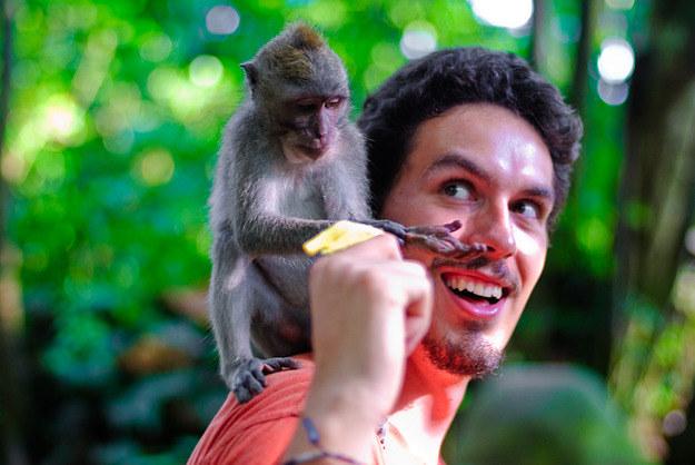 W Świątyni Małp w Ubud. Bali, Indonezja, 2010 /materiały wydawnictwa /