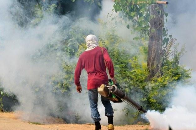 W Tajlandii są organizowane regularne zadymiania, które mają na celu wybicie komarów z gatunku Aedes aegypti. To jedyny sposób ochrony przed dengą /123RF/PICSEL
