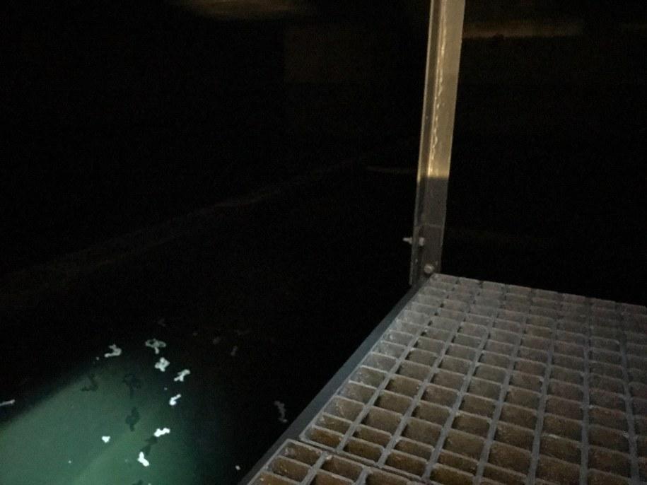 W zbiornikach zbierana jest woda deszczowa spływającej z dachu stadionu /Kuba Kaługa /RMF FM