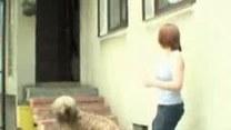 Wakacje dla psa i kota