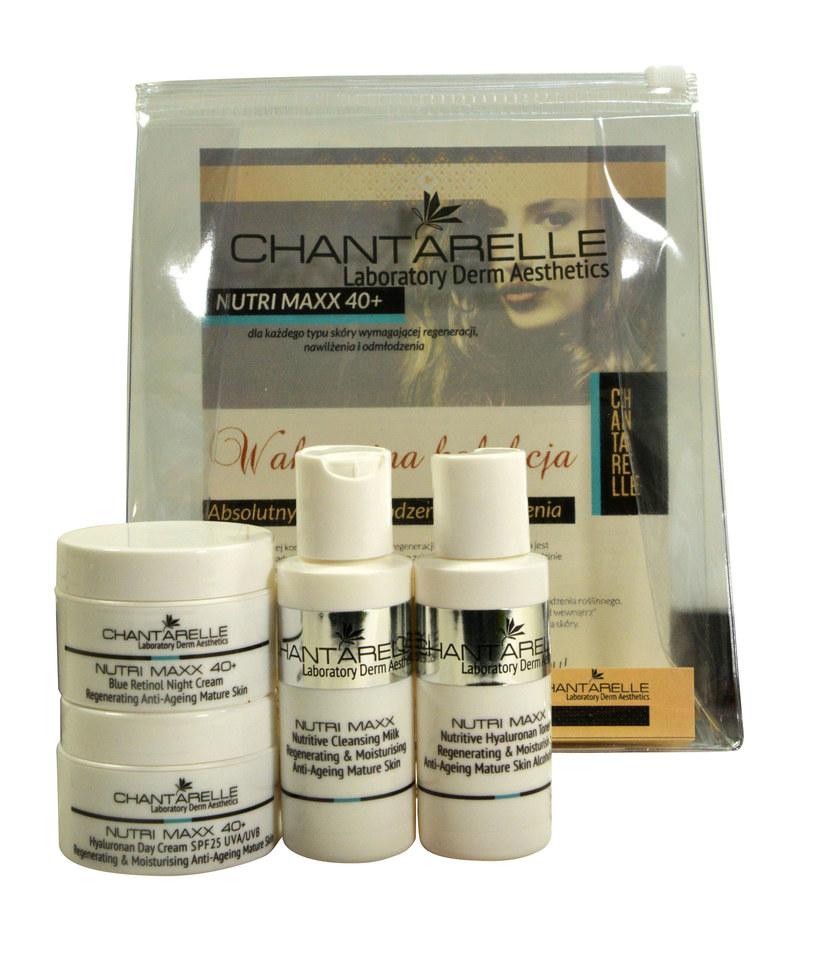 Wakacyjny zestaw Chantarelle /materiały prasowe