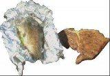 Wałęsa uwielbia potrawy z ryb /INTERIA.PL
