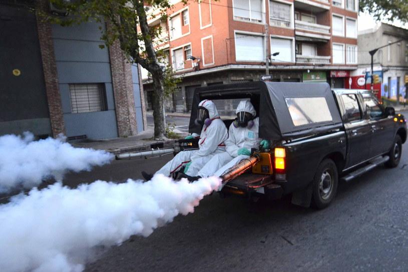 Walka z komarami, które podejrzewa się o przenoszenie wirusa /Artigas Pessio Vignolo / HANDOU /PAP/EPA