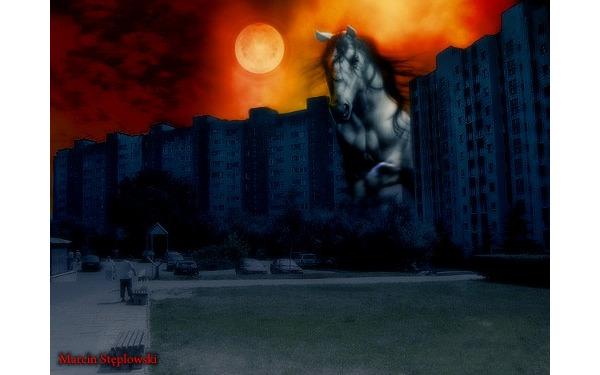 Koń apokalipsy