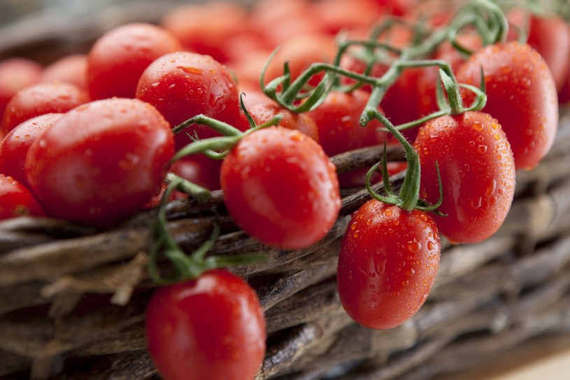 Warto pamiętać, że pomidory mogą wywoływać uczuelnia /123RF/PICSEL