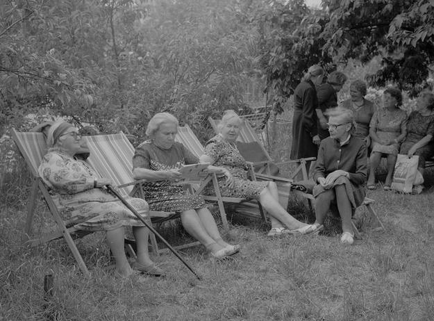 Wczasy dla seniorów w ogródkach działkowych /Z archiwum Narodowego Archiwum Cyfrowego