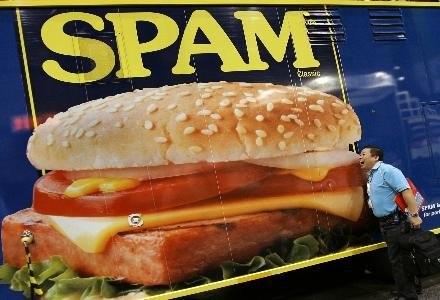 We wrzesniu nie odnotowano już spamu z botneta Storm. Czyżby groźny robak został pokonany? /AFP