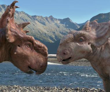 """""""Wędrówki z dinozaurami 3D"""" [trailer]"""