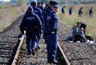 Węgry budują nowe ogrodzenie na granicy z Serbią