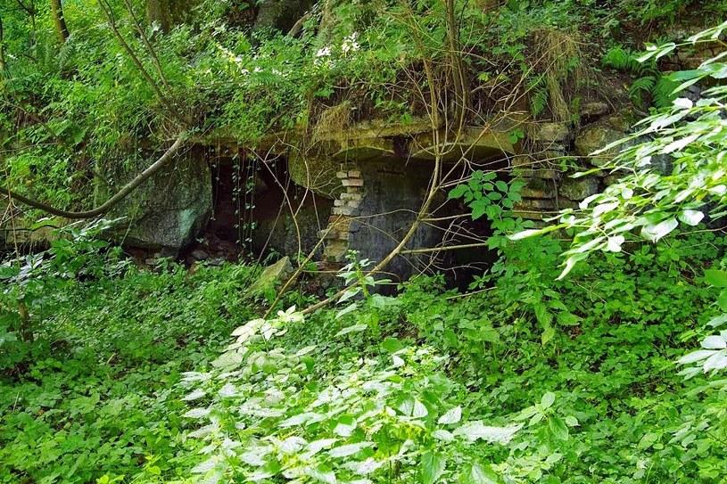 Wejścia do podziemi pod dawnymi budynkami mieszkalnymi /Odkrywca