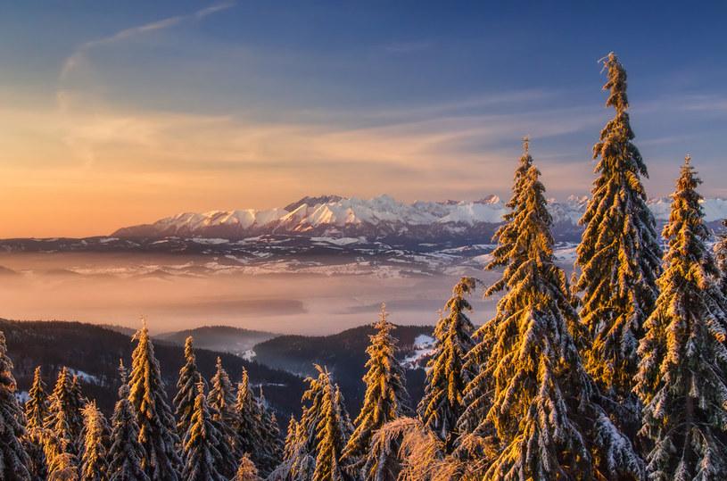 Wejście na Turbacz, najwyższy szczyt Gorców, nie należy do najtrudniejszych /materiały prasowe
