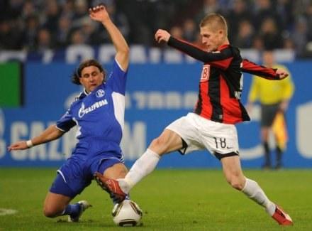 Wichniarek chce wrócić do kadry, lecz wie, że najpierw musi ustabilizować formę w klubie /AFP