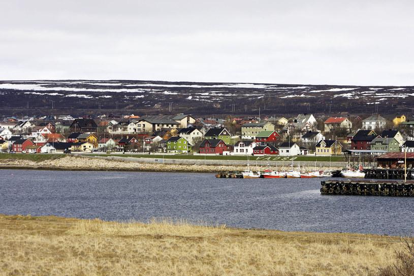 Widok na Vadso w Norwegii /M. Watson/ardea.com /Agencja FORUM