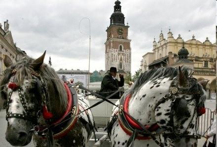 Widok z oczu przechodnia - tak można opisać Street View /AFP
