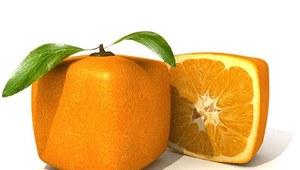 Większość Polaków nie wie, co to GMO