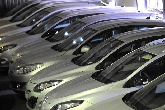 Większość samochodów Amber Gold znalazła już nabywców / Fot: Wojciech Stróżyk /Reporter