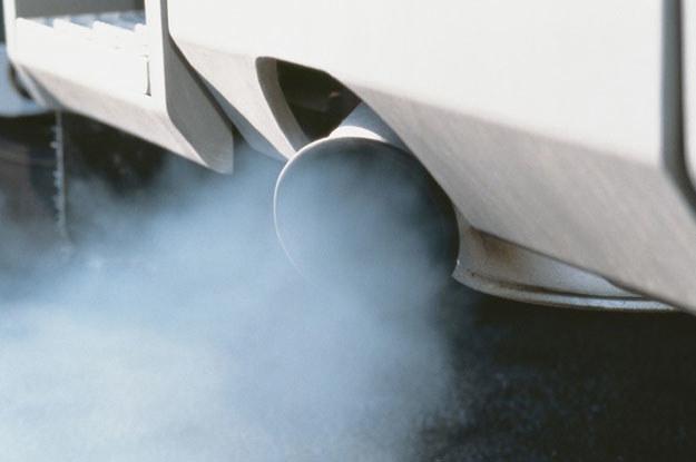Wiele turbodiesli przemieszcza się przecież na krótkich odcinkach miejskich /Agencja SE/East News