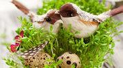 Wielkanoc pachnie rzeżuchą