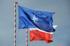Wielki Test Wiedzy o NATO - sprawdź wyniki