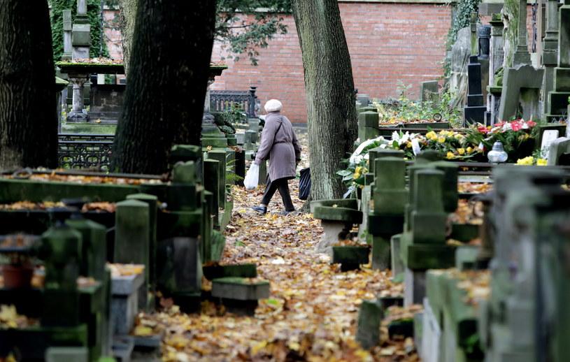 Wielu ludzi sprząta na cmentarzach przed 1 listopada /Tomasz Gzell /PAP