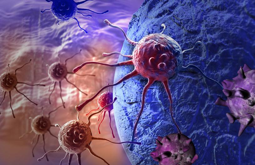 Wielu nowotworów można uniknąć /123RF/PICSEL