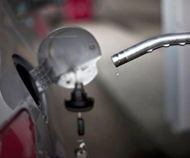 Wiemy, gdzie sprzedają najtańsze paliwo