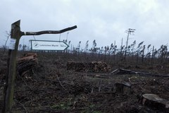 Wieś Rytel: 100 po sierpniowym kataklizmie