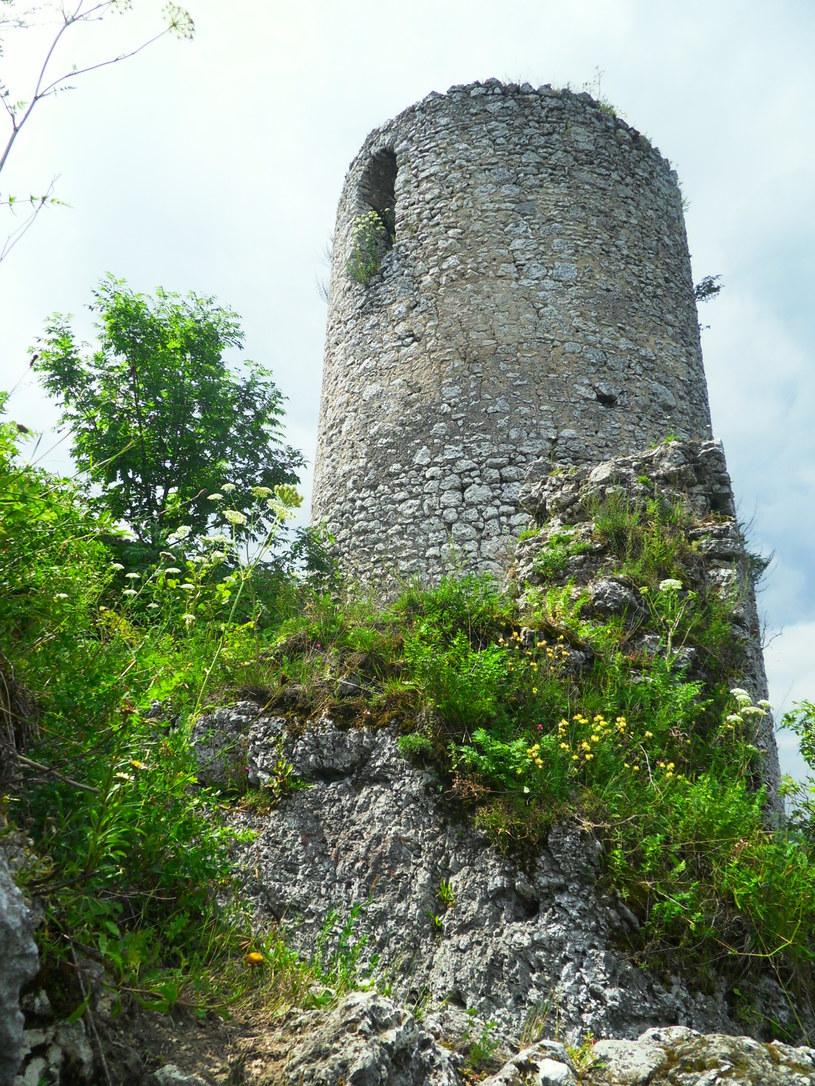 Wieża zamku Smoleń/fot. Ania Gaj /Styl.pl