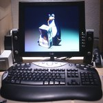 Windows kontra Linux