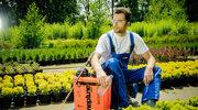 Wiosenne prace w warzywniaku i sadzie