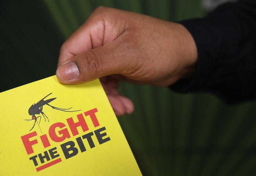 Wirus Zika przenoszony jest przez tropikalne komary /AFP