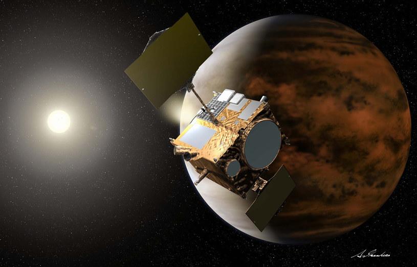 Wizja artystyczna sondy Akatsuki na orbicie Wenus /materiały prasowe