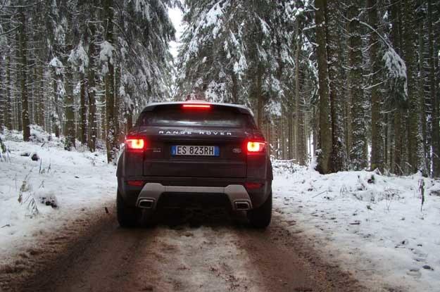 Wjeżdżamy na leśną drogę... /INTERIA.PL