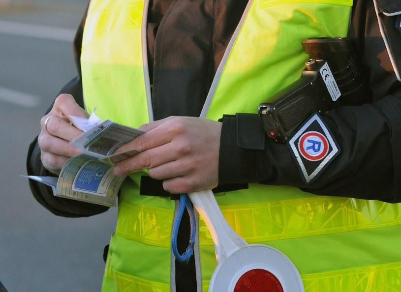Wkrótce nie będziemy musili wozić ze sobą dowodu rejestracyjnego czy prawa jazdy /Paweł Skraba /Reporter