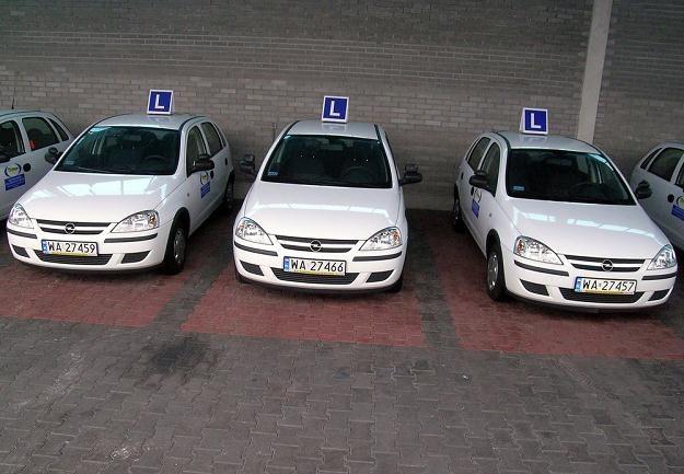 Wkrótce wejdą w życie nowe zasady dotyczące praw jazdy / Fot: Jacek Wajszczak /Reporter