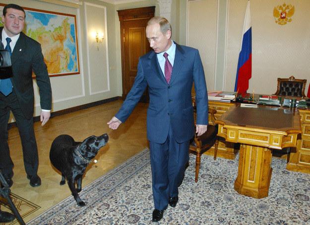 Władimir Putin z ulubionym psem Konni /AFP