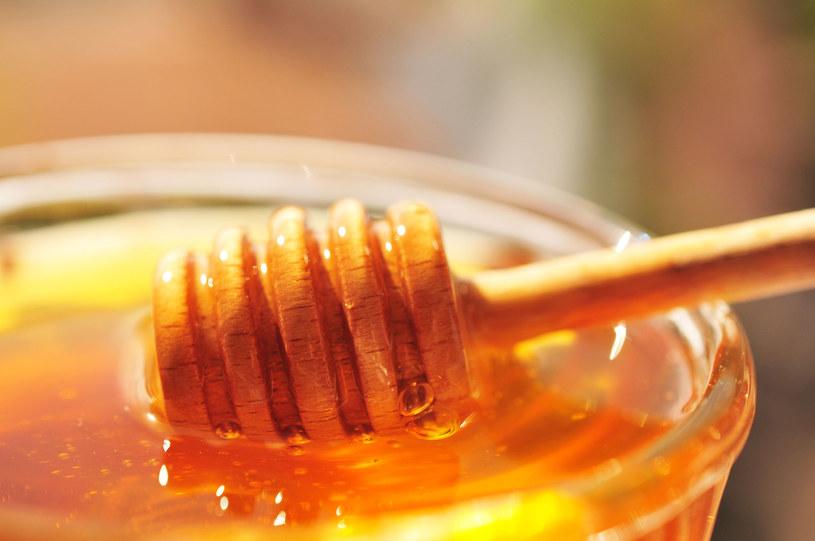 Właściwości miodu zależą głównie od tego, z jakich roślin pszczoły zbierały nektar /123RF/PICSEL