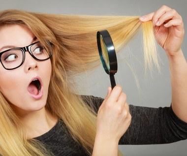 Włos pod lupą – zaskakujące fakty na temat włosów