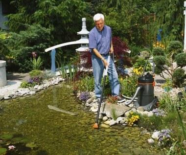 Wodny ogród wiosną